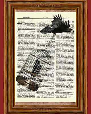 Edgar Allan Poe Raven in Birdcage Dictionary Art Print Picture Poster Story Book