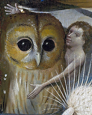 Bosch Garden - Bosch The Garden of Earthly Delights Painting Owl Detail Fine Art Canvas Print