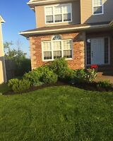 Bark Mulch Installation - Book Today for a Free Quote!