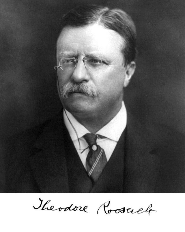 President Theodore Teddy Roosevelt Autograph Portrait 8 x 10 Photo Picture g11