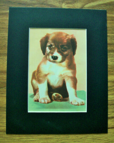 Print Dog Lab Peggy Burrows Wolff 1955 Bookplate 8x10 Matted Adorable Puppy