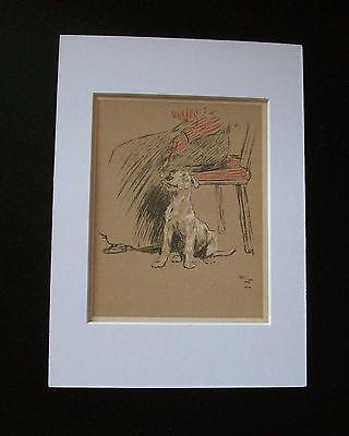 Mutt Mat - Terrier? Mutt Dog Print Cecil Aldin Bookplate 1902 Puppy Lick Lady Spoon Matted