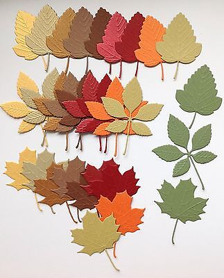 Pretty Leaf Die Cuts with Embossed Detail (autumn mix) 30 pieces