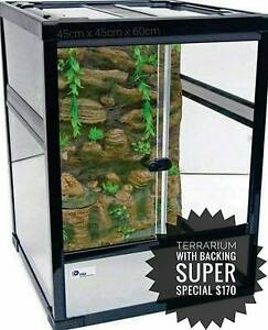 TERRARIUM WITH YOUR CHOICE OF A 3D BACKING Kilburn Port Adelaide Area Preview