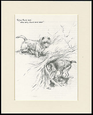 CAIRN AND LAKELAND TERRIER LOVELY 1930'S DOG ART PRINT READY MOUNTED
