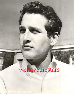 Vintage Paul Newman EARLY HANDSOME '56 MGM Publicity Portrait