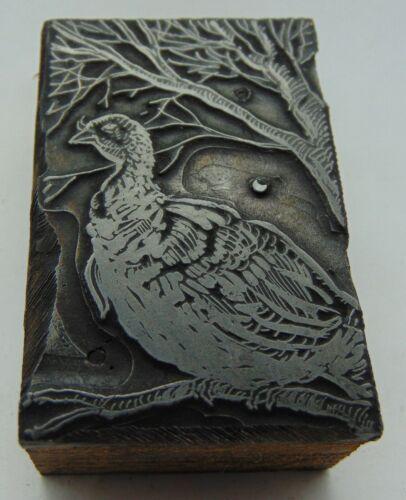 Printing Letterpress Printers Block Game Bird On a Tree Branch