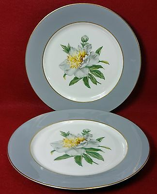 PRINCESS china GOLDEN PEONY pattern Set of 2 Dinner Plates - 10-1/4""