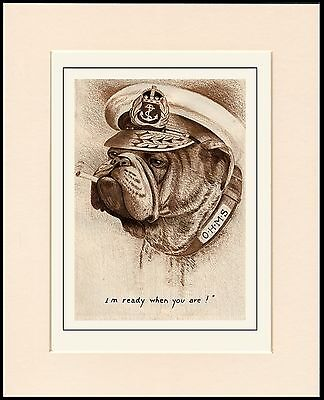 BRITISH BULLDOG WEARING CAPTAINS HAT GREAT DOG PRINT MOUNTED READY TO FRAME