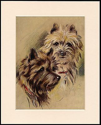 CAIRN TERRIER CHARMING HEAD STUDY TWO DOGS MOUNTED DOG PRINT READY TO FRAME