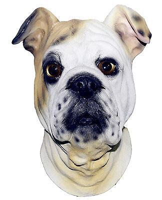 Bulldog Máscara Perro Látex Altillo Británico Animal Disfraz Canino Halloween