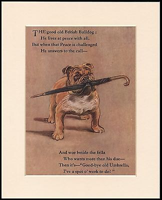 BRITISH BULLDOG WITH UMBRELLA FIGHTING SPIRIT DOG PRINT MOUNTED READY TO FRAME