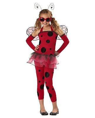 Love Bug Ladybug Full Costume Red Girls w/ Sunglasses Girls Reg & Plus L,MP LP](Lovely Ladybug Costume)