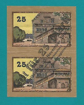 Geldschein-Lindau im Bodensee-1.10.1919-25 Pf. zu 25 Mark-Das Leben-Ein Kampf-