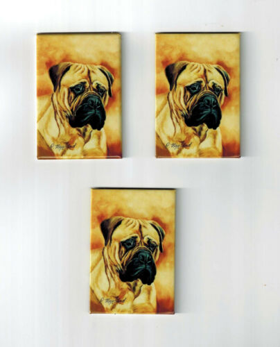 New Bullmastiff Pet Dog Magnet Set 3 Magnets By Ruth Maystead MFR # BLM-5