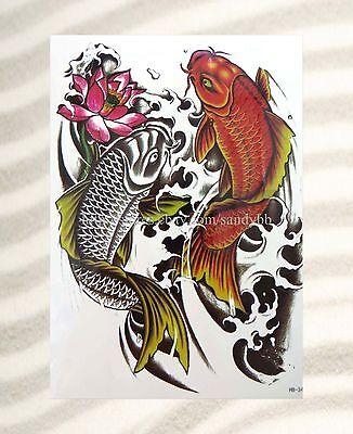 - RED KOI koi fish carp fish  extra large size 8.25