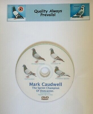 racing pigeon dvd, mark caudwell