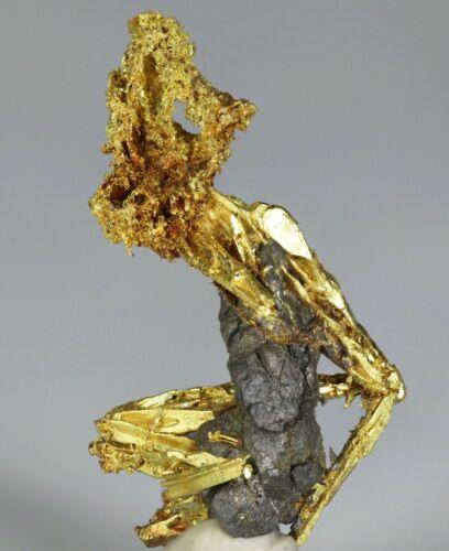 Native Gold on Arsenopyrite Queen Lil Mine, Nevada Co., California.