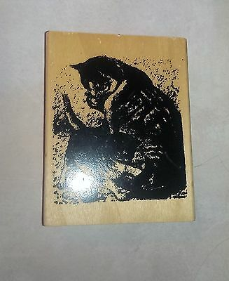 "Anita's Cat Kitty Wood Block Rubber Stamp Size J 3"" x 3.5"" Crafts Scrapbooking"