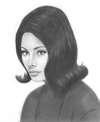 Sophia Loren original graphite pencil drawing