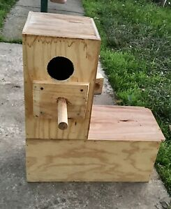 Nest box for large parrot