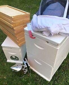 Complete Working Bee Hive Package Glen Waverley Monash Area Preview