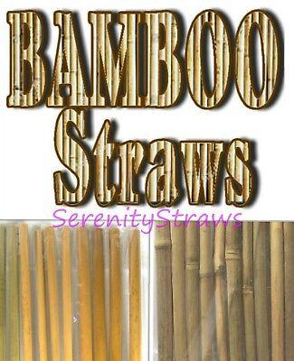 BAMBOO  Drinking Straws, Choice of 7