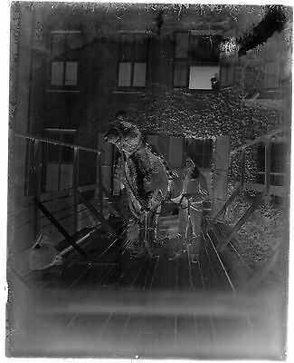 GLASS NEGATIVE ANTIQUE TWO PERSON CAMEL COSTUME HANDLER FACING, NO RIDER, - Two Person Costume