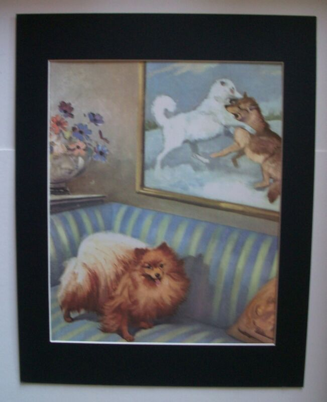 Pomeranian Alaskan Dogs Print Wesley Dennis M Henry 11x14 Bookplate 1955 Matted