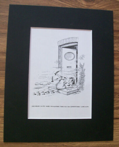 Child Cartoon Print Norman Thelwell Too Many Kids Bookplate 1977 8x10 Matted