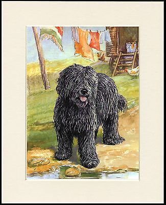HUNGARIAN PULI LOVELY DOG PRINT MOUNTED READY TO FRAME
