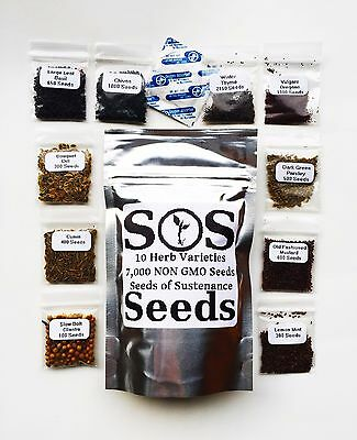 7,000 Herb Seeds 10 Varieties Basil Cumin Parsley Chives Cilantro Mustard Thyme