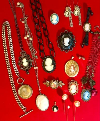17 Vintage to Modern Cameo Brooch Pin Necklace Earring Jewelry Lot
