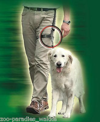 legleader® - legleader - Joggingleine - Trainingsleine  für kleine Hunde  64331