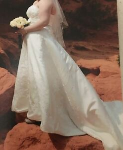 Ivory Wedding gown and veil