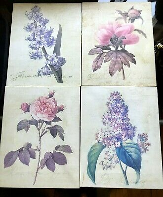 Set of 4 Floral Botanical Art Prints Stretched on Canvas 8x10 Shabby Chic Decor