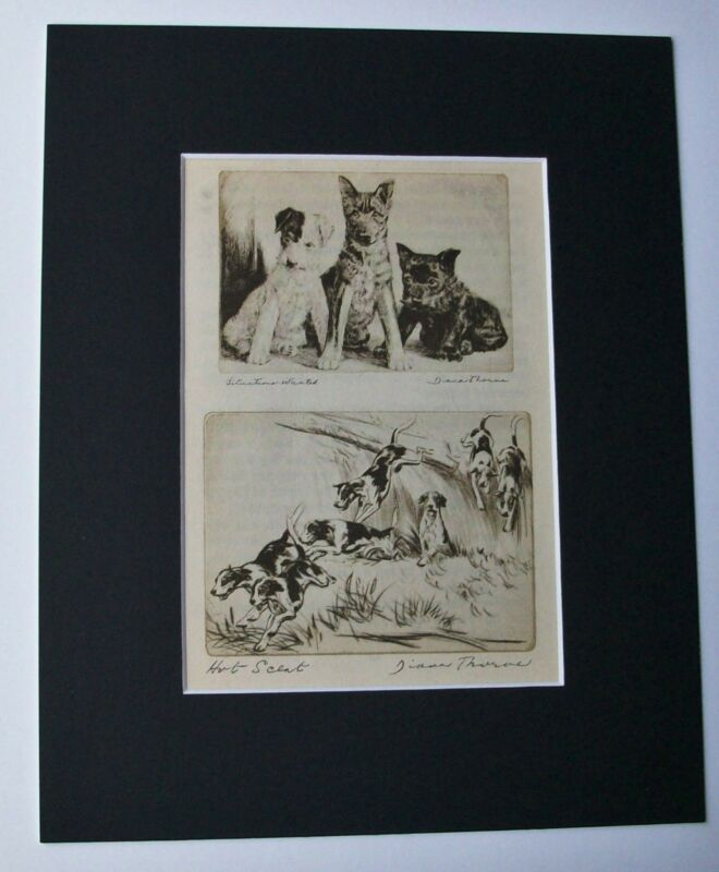 Print Diana Thorne 1936 Double Bookplate German Shepherd Terriers Fox Hounds