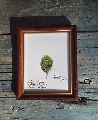 GREEN MACAW PARROT SMALL FEATHER ART PAINTING & COA LUCIANA TRANCHINA COSTA - Green Macaws Framed