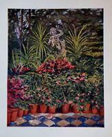 1904 Cromolitogr.colori.in Grounds Of Marion.crawfod's Villa.napoli Fitzgerald. -  - ebay.it