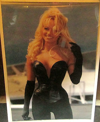 Pamela Anderson Vintage Poster Playboy Super Model Leather Sexy Rare Oops 1997