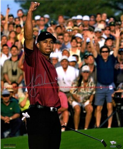 TIGER WOODS Autographed 8x10 Signed Photo Reprint