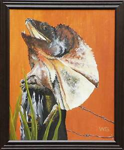 FRILLED NECK LIZARD $80 Please E-MAIL only. Cranbrook Townsville City Preview