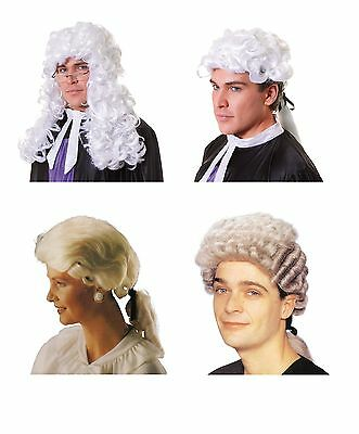 Court / Barrister / Judge / Lawyer Wig All Kinds Costume Accessory (Lawyer Costume)