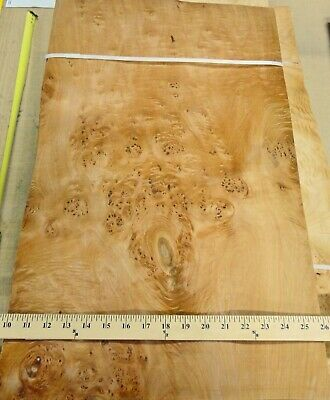 Maple Burl Cluster Wood Veneer 16 X 26 Raw No Backing 142 Thickness A