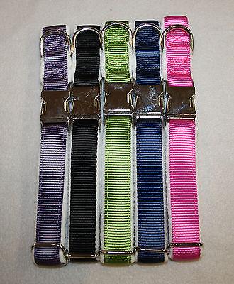 Hundehalsband mit/ohne Leine, Nylon Fleece gepolstert, Metall-Klickverschluss
