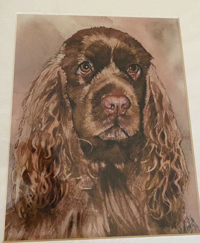 Sussex Spaniel Print 8x10 Matted