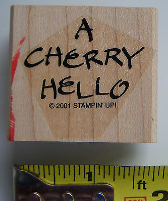 FRUITY PHRASES One In A Melon Punny rubber stamp set Stampin' Up!