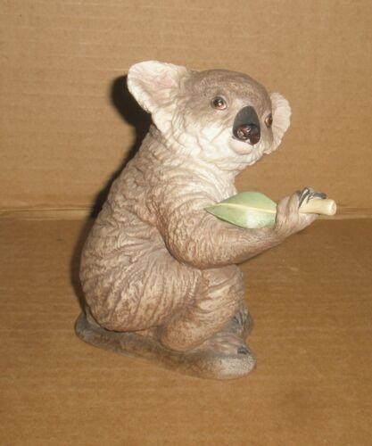 Boehm Koala