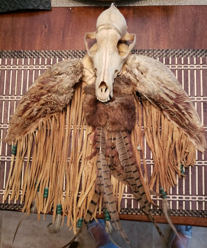 ANTIQUE HAND MADE NATIVE AMERICAN COYOTE SKULL & OWL WINGS HANGING