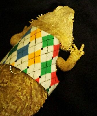 Lil' Bestie Bearded Dragon reptile Harness and Leash Argyle sweater vest